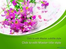 10200-springtime-ppt-template-0001-1