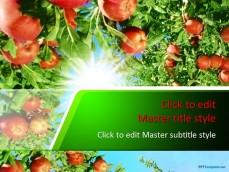 10205-garden-ppt-template-0001-1