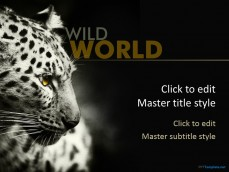 10374-leopard-ppt-template-0001-1