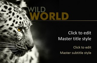 Free Point Templates Wild Animals
